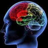 Reabilitação Cognitiva